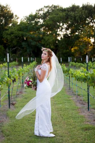 winery, wedding, bride, Austin wedding, photograp